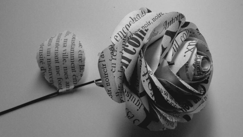 Rose littéraire, découpée dans des extraits de textes d'un auteur réécrits avec différentes typo,©Kalifragili (tous droits ré