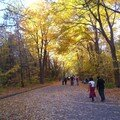 Mont royal 21oct 018