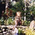 site de Lipona avec le plus grand tiki de Polynésie_01