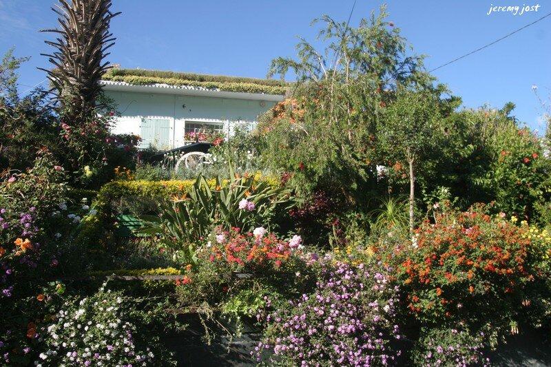 jardin de cilaos