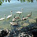 Au bord du lac....