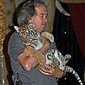 Bébé tigre de Rémy Demantes