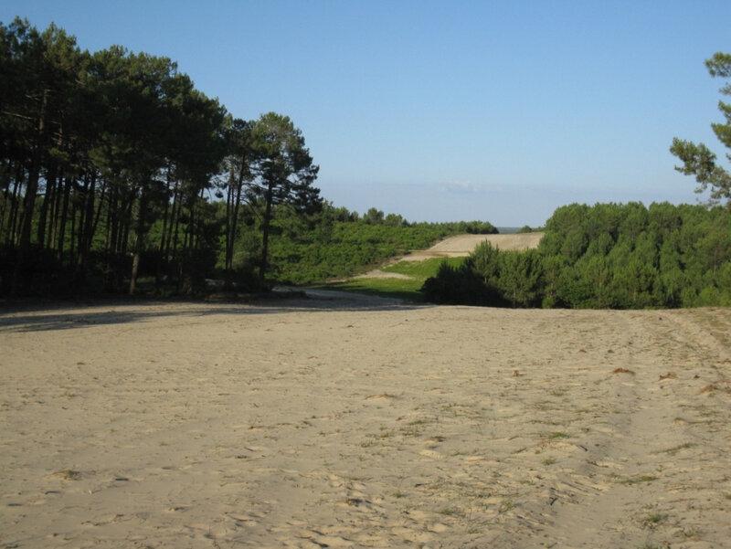 Photo-dunes-modernes-fixées-par-les-ateliers-du-XIXèsiècle-entre-lacs-et-océan