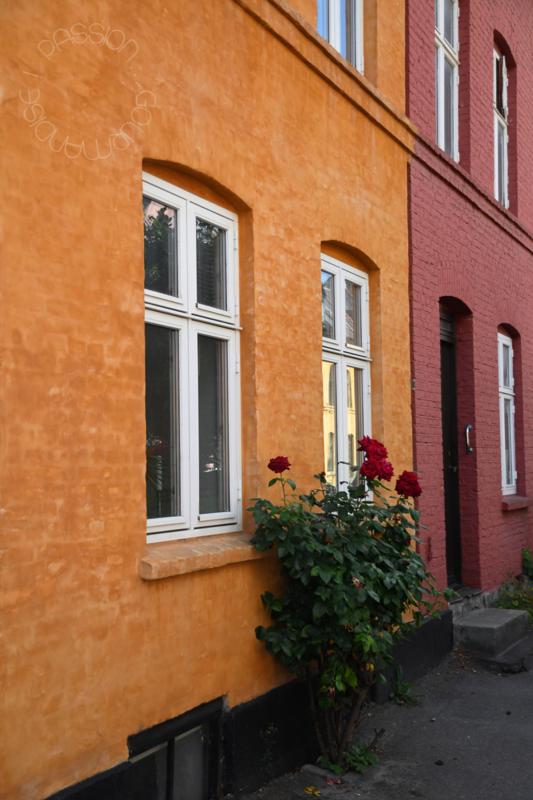 Copenhague, rue colorée_4