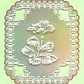 carte pergamano embossée-02-2011