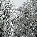 Le retour de la neige nous rappelle qu'on est encore en hiver !