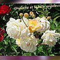 2015 les roses de balanicole