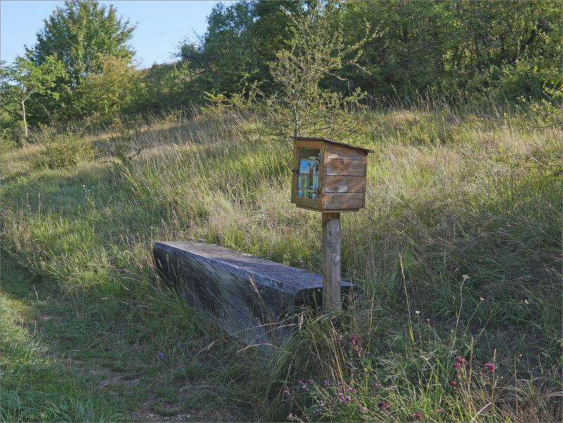 PromenadeThouet Availles ENS vallées sèches 200819 ym 18 biblio