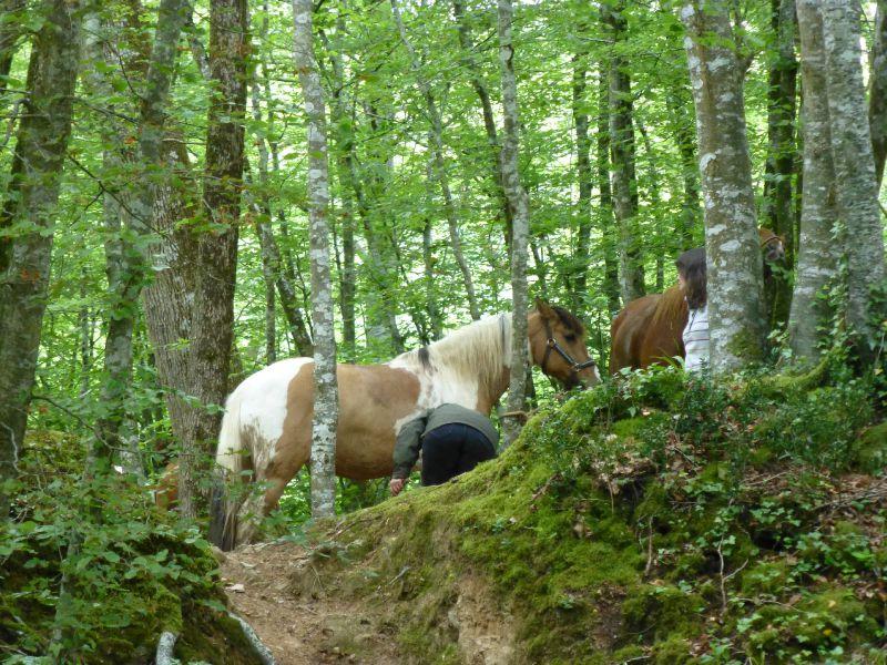 balade equestre gastronomique à La Lucerne d'Outremer (11)