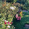 Windows-Live-Writer/Jardin_10232/DSCN0730