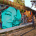 Montage photo murale