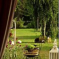 Windows-Live-Writer/jardin_D005/DSCF3915_thumb