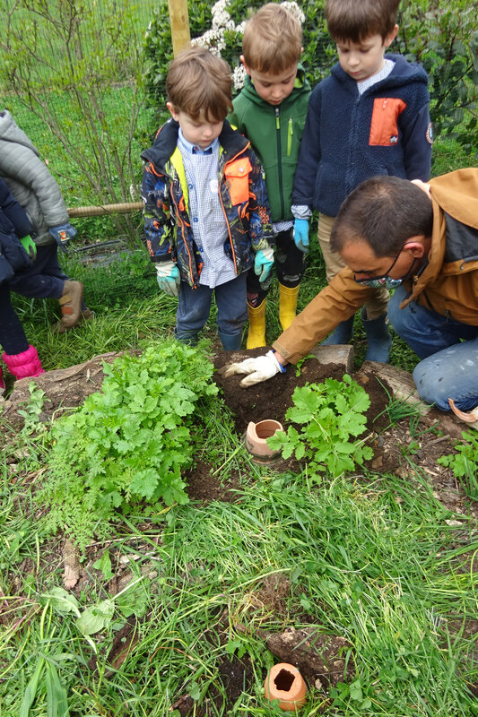 080321 permaculture (18)