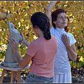performance Danse, Sculpture et Musique, Gémozac et Crazannes ,