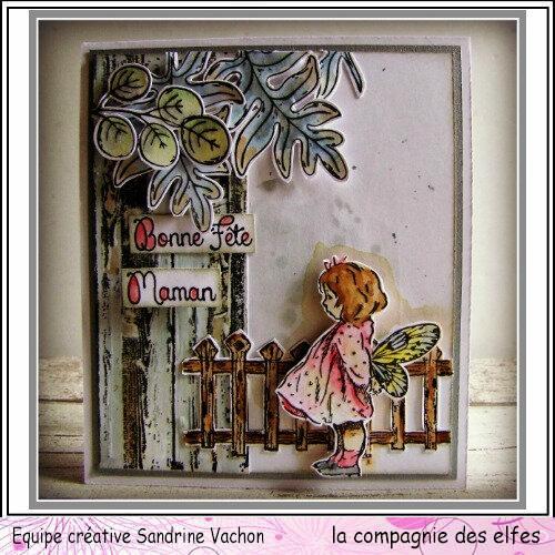 avril Sandrine VACHON dt LCDE (1)