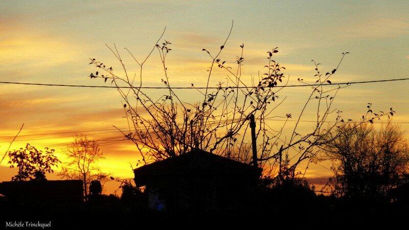 Lever soleil 0411159