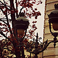First fall at paris