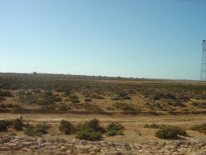 Le desert djérbien.