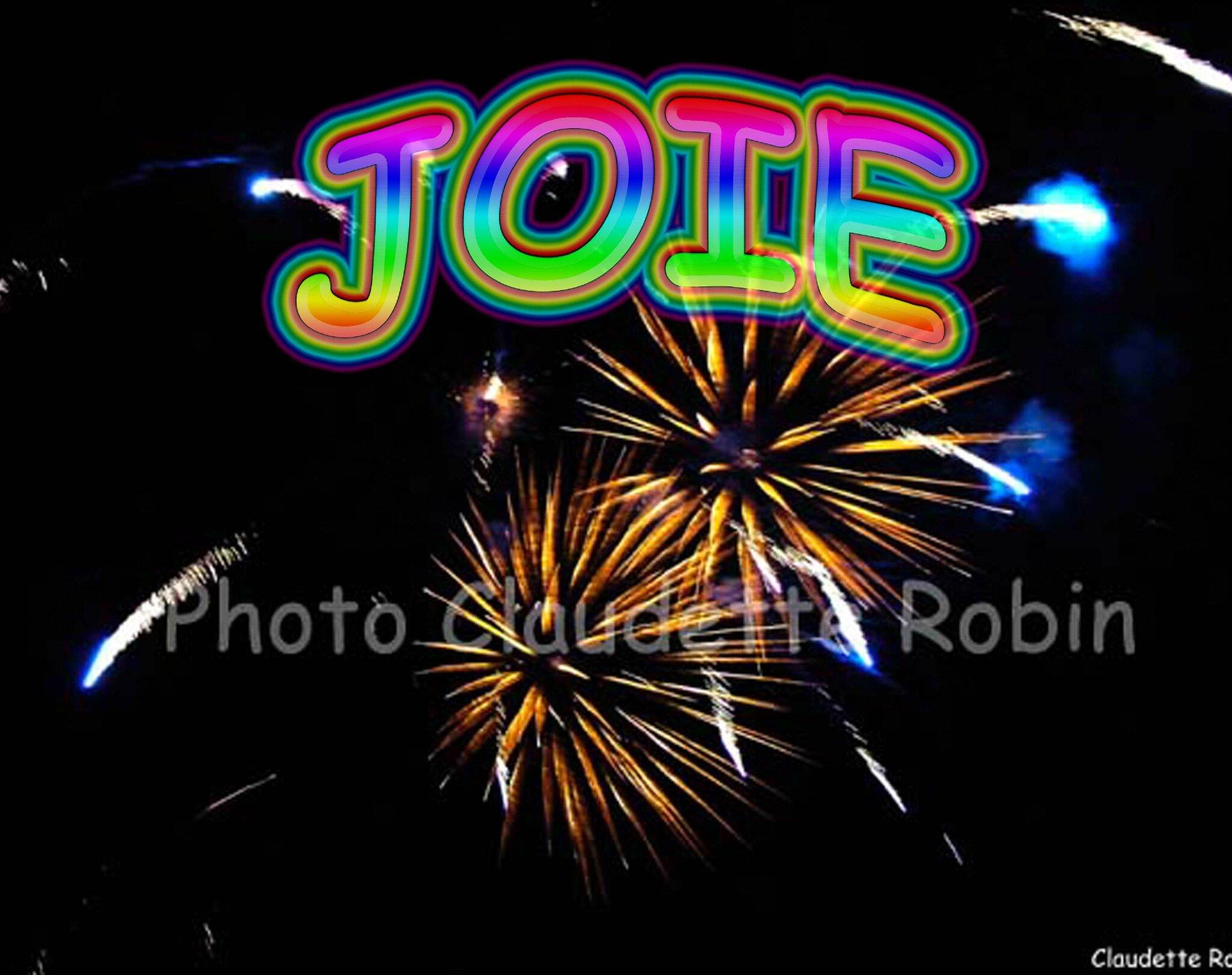 CR-11 - Joie