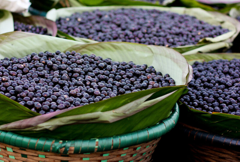 açai fruit