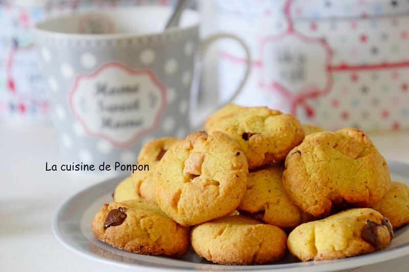 biscuit choco noisette (22)
