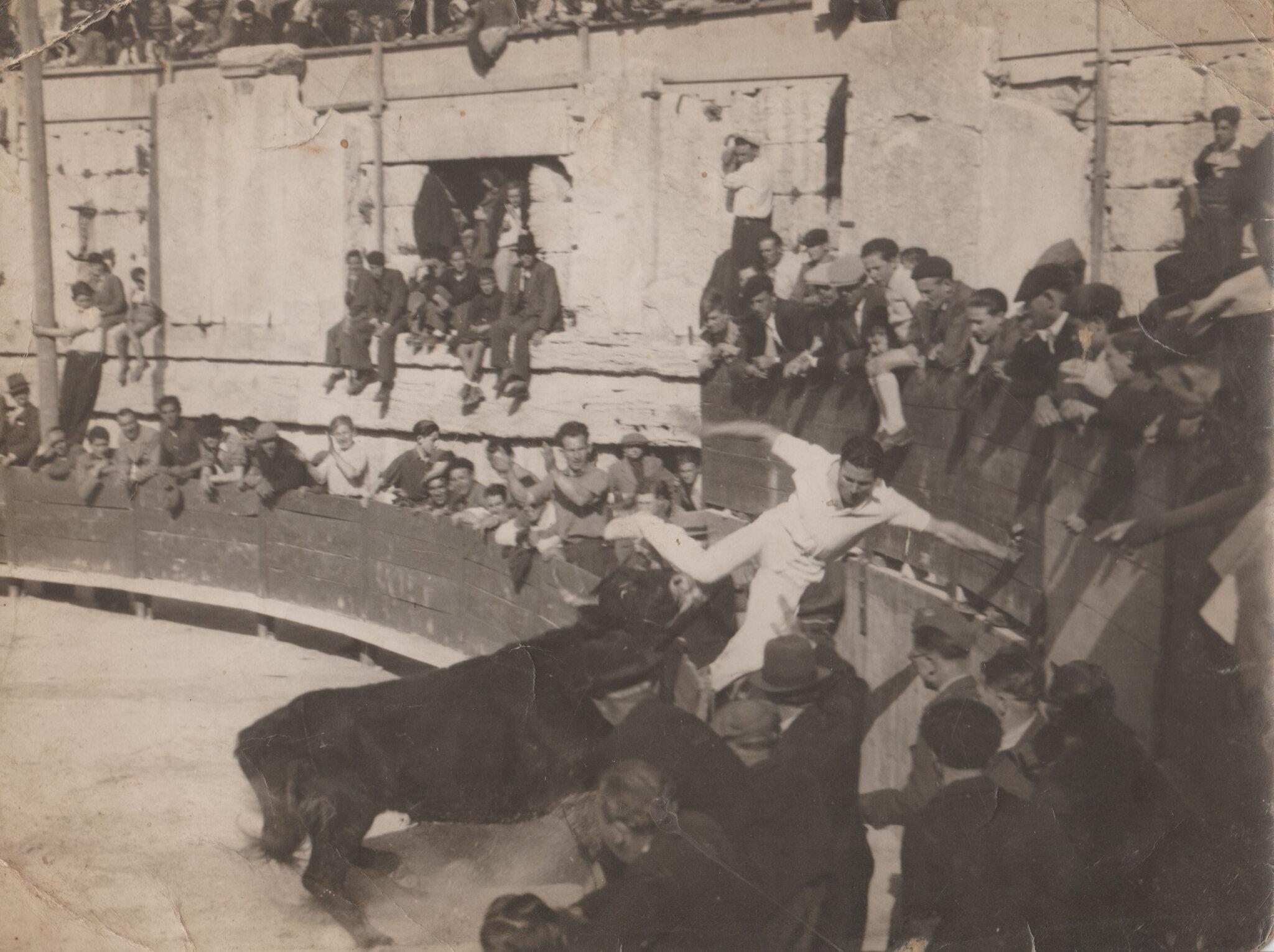 cocarde 1945 vainqueur Louis Arnaud Cafetier meilleur taureau Delbosc