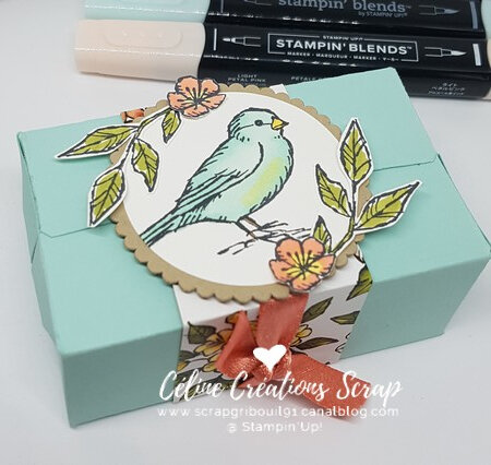 Paquets parfaits Libre comme un oiseau -6