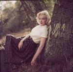1953-09-02-LA-Laurel_Canyon-Tree_Sitting-020-1