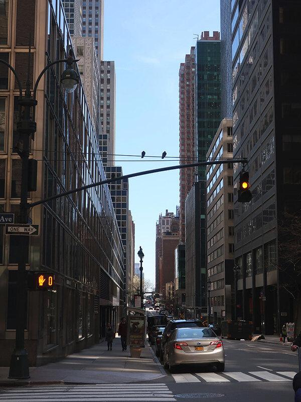 rues ff