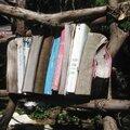 Bibliotheque insolite...plein air.