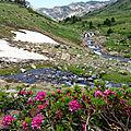 joli paysage dans la vallée de la Têt