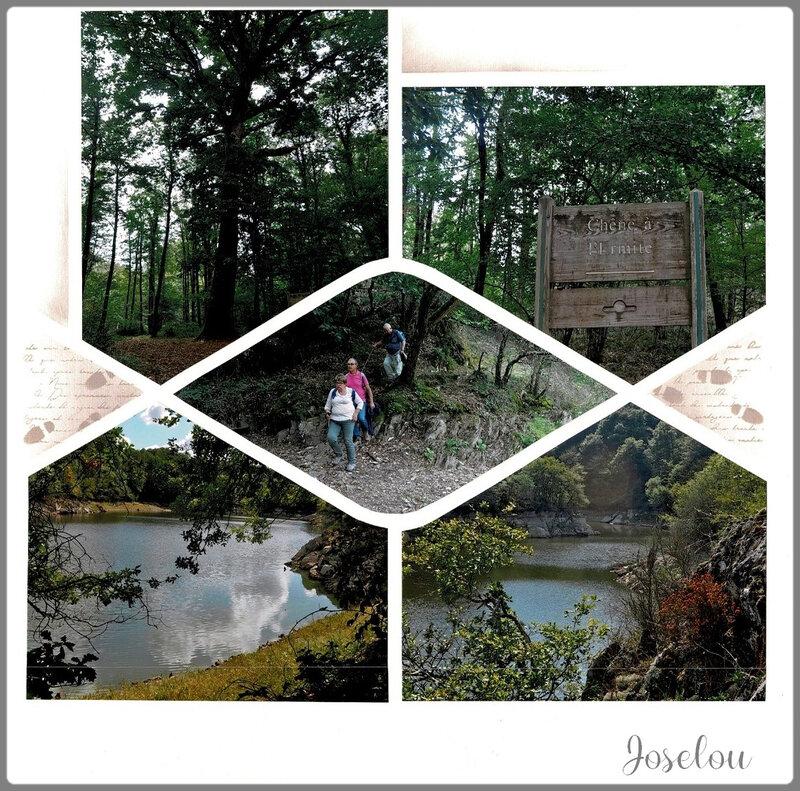 Forêt de Mervent (12)