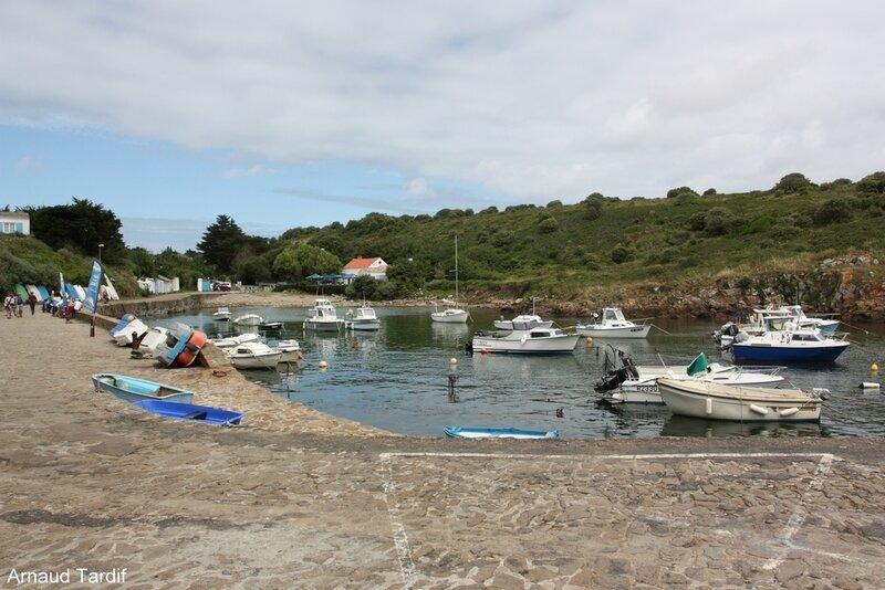 001422 Noirmoutier Juin 2020 - L'Ile d'Yeu - La Côte Sauvage - Le Port de La Meule