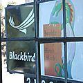 Blackbird ...mon ami.