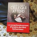 Celle qui attend - camille zabka