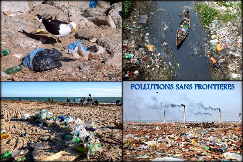 POLLUTIONS_SANS_FRONTIERES
