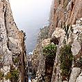 Tasman peninsula25
