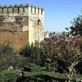 Alhambra. La tour abasside