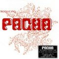 Introducing Pacha 2007
