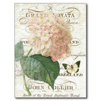 carte_postale_botanique_francaise_vintage_dhorten-r3125b8dda39747268f06fc2b7d7278c8_vgbaq_8byvr_324
