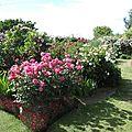 Jardin de Morailles (4)