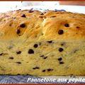 Panettone aux pépites de chocolat
