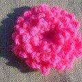 Chrysanthème japonais rose pol_a