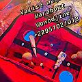 Valise magique - valise magique en euro - valise magique multiplicateur d'argent