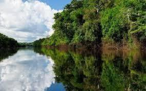Votre vie n'est pas un long fleuve tranquille,marabout du monde.