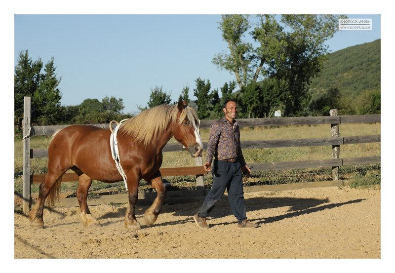 Photos JMP©Koufra 12 - El Rancho - Le Mas de Sisco - 25082020 - 0026