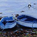 Les barques bleues
