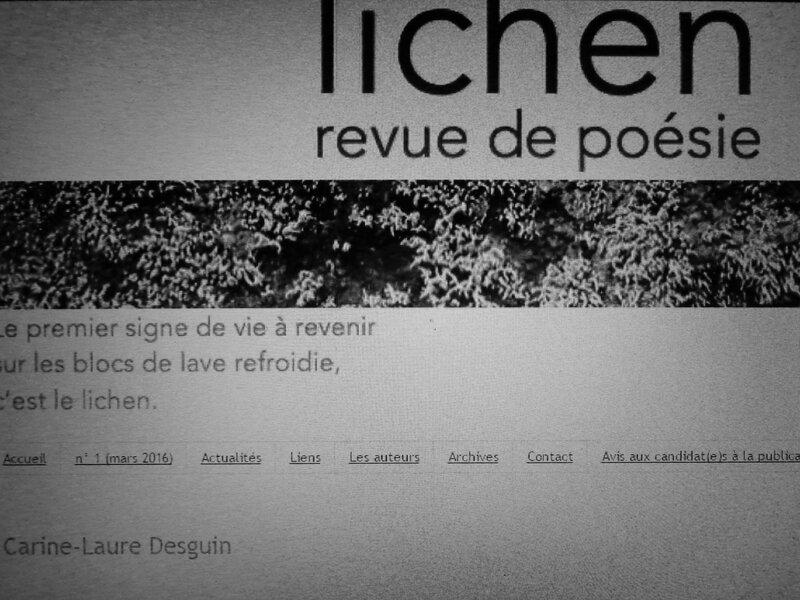 Dans Lichen 6, trois textes inédits de Carine-Laure Desguin