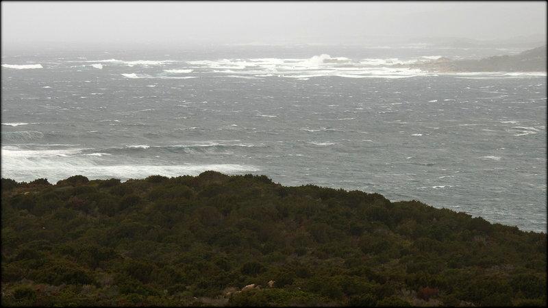 A TESTA WIND-SURF / HORS - NORME MEDITERRANEE !...