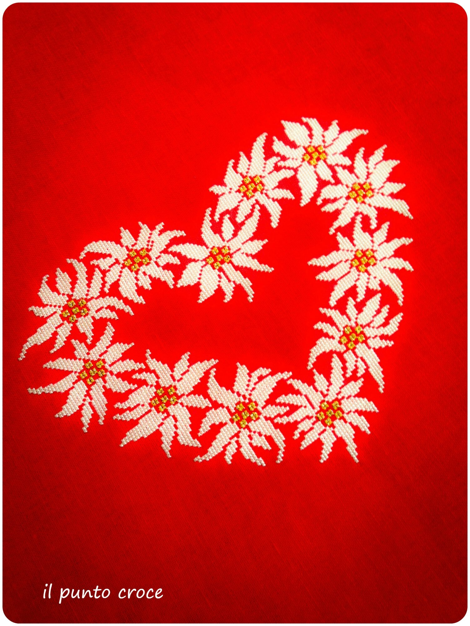 cuore Edelweiss 1